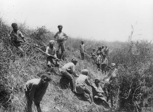 q-12495-indian-soldiers-clearing-undergrowth-to-prevent-malaria